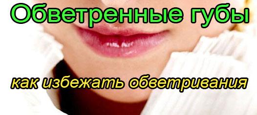 Обветренные губы - лечение в домашних условиях