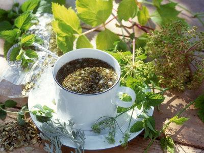 Успокаивающие и тонизирующие чаи