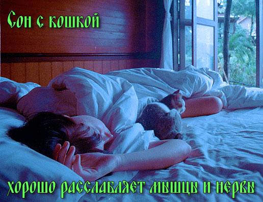 Сон с кошкой расслабляет мышцы и нервы