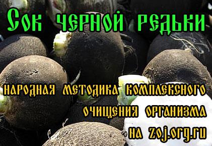 Полезные свойства черной редьки
