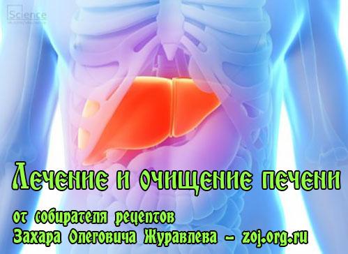 Лечение и очищение печени от токсинов и шлаков