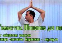 Гимнастика для шеи Александра Шишонина